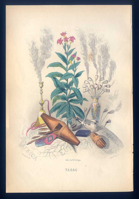 LES FLEURS ANIMÈES - TABAC - Tabak - rauchen - Lithographie 1852 ...
